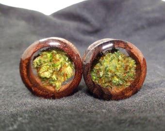 Organic Wood Cannabis Filled Plugs-Weed Plugs-Weed Gifts-Weed Gifts Boyfriend-Marijuanna-Organic Wood Plugs-Weed-Stoner Plugs-Wood Plugs