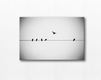 bird photography gallery wrap 12x18 20x30 birds photography canvas wrap flying canvas print birds on wire photography canvas black white art