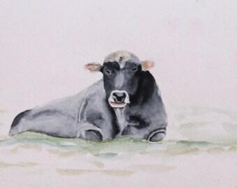Bull has l watercolor