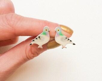 Hand Painted Pigeon earrings.  Bird Earrings - Hand drawn