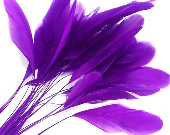 Eyelash Feathers, 1 Dozen - PURPLE Stripped Rooster Coque Tail Feathers: 537