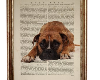 Boxer Dog Gifts, Boxer Dog Art Print Dictionary Book Page, Dog Decor Wall Hanging illustration, Gift For Dog Lover