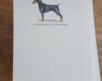 Doberman Pinscher Note Card Set