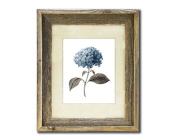 Blue Hydrangea Flower #5 Wall Art Print, Gift for Mom, Gift for Her, Living Room Decor, Vintage Botanical Art, Housewarming gift idea
