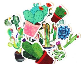 Succulent Stickers/  filofax stickers/Cactus Stickers/planner stickers