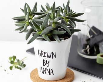 Personalised 'Grown By' Plant Pot