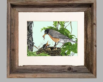 Robin and Babies- Framed- Barnwood
