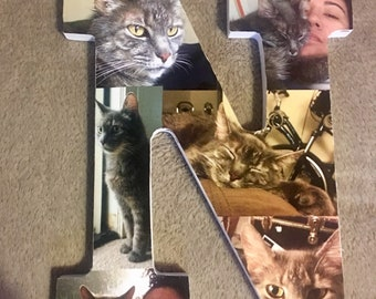 Cat Photo Collage Letters