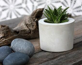 Sedona Planter, Small Round Cement Planter, Natural Color