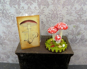 Terrarium with toadstools under glass dome in 1:12 scale