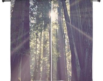 Voilages - forêt, Treescape, Home Decor, séquoias, randonnée, photographie de la nature par RDelean Designs