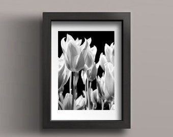 Floral Art, Black and White Photography, Monochromatic Art, Gift Flower Lover, Flower Photography, Black and White Art, Tulip Photography