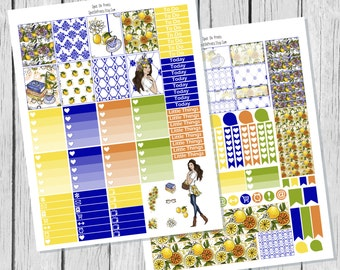 Lemon Planner Sticker Printable / Sticker Printable / Spring Printable Planner Stickers / Weekly Planner Sticker Kit /  Summer Sticker Kit