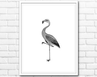 Flamingo Print, Black and White Prints, Animals, Printable Art, Black and White Nature Decor, Prints, Wall Decor INSTANT DOWNLOAD - 1034