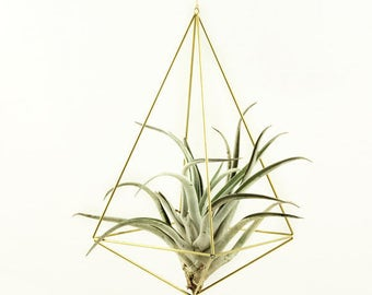 Hanging Air plant geometric holder, mobile Himmeli Octahedron No03, air plant geometric planter, airplant display, home decor gift, OC03