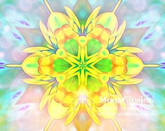 Flower Child - Mandala photography Graphic art altered photograph zen yoga meditation