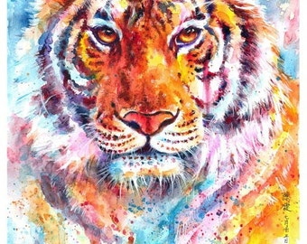tiger: framed prints (size 12x17cms or 17x22cms)