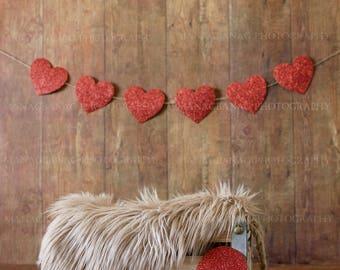 Sweet Valentine Digital Backdrop