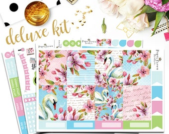 SWAN LAKE Deluxe Kit Planner Stickers for use with Erin Condren Life Planner/Weekly Planner Sticker Kit/Sticker Set/Spring Stickers/May