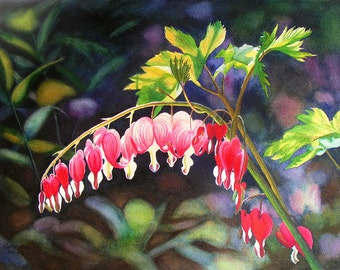 Bleeding Heart art watercolor painting print by Cathy Hillegas, 11x14, floral watercolor print, Valentines gift, gift for her red flower art