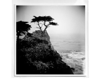"Fine Art Photography ""Lone Cypress"" Archival Print"