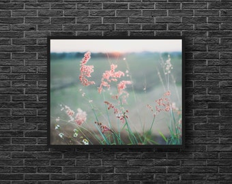 Field Grasses Photo - Pink and Green - Fields - Country Photo - Grasses Photography - Nature Photo - Country Wall Decor - Botanic Wall Art