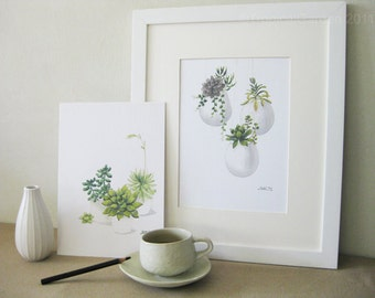Succulent Watercolor Print Set - Any FOUR Succulent Art, Succulent Print / 8x10 OR 8x11 Botanical Prints, Modern Home Decor