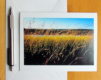 Golden Grass Note Card, Photo Note Card, Notecards, Stationery, Nature Note Cards, Blank Cards, Cards with Envelopes, Landscape Note Cards