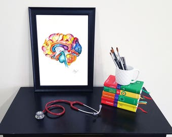 Medical Anatomy Art- Watercolour Painting- Brain Section- LARGE sizes