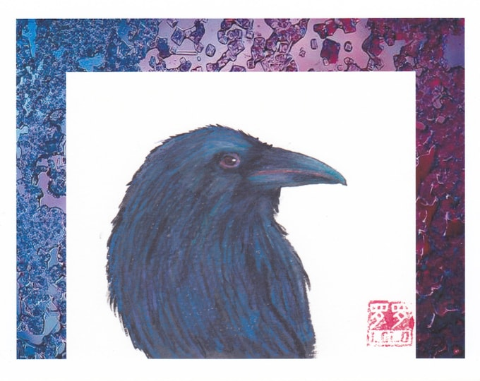 raven with border greeting card