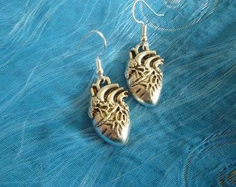 Heart shaped anatomical medical heart earrings medical student anatomy dangly earrings