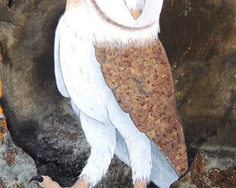 Barn Owl Print Magnet