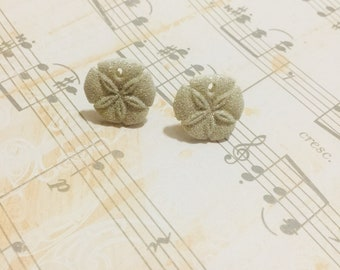 White Sand Dollar Earrings