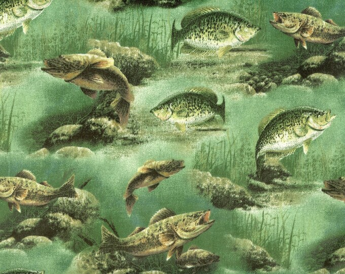 Gone Fishin' 100% cotton fabric, sold by ( multiple lengths)  #64