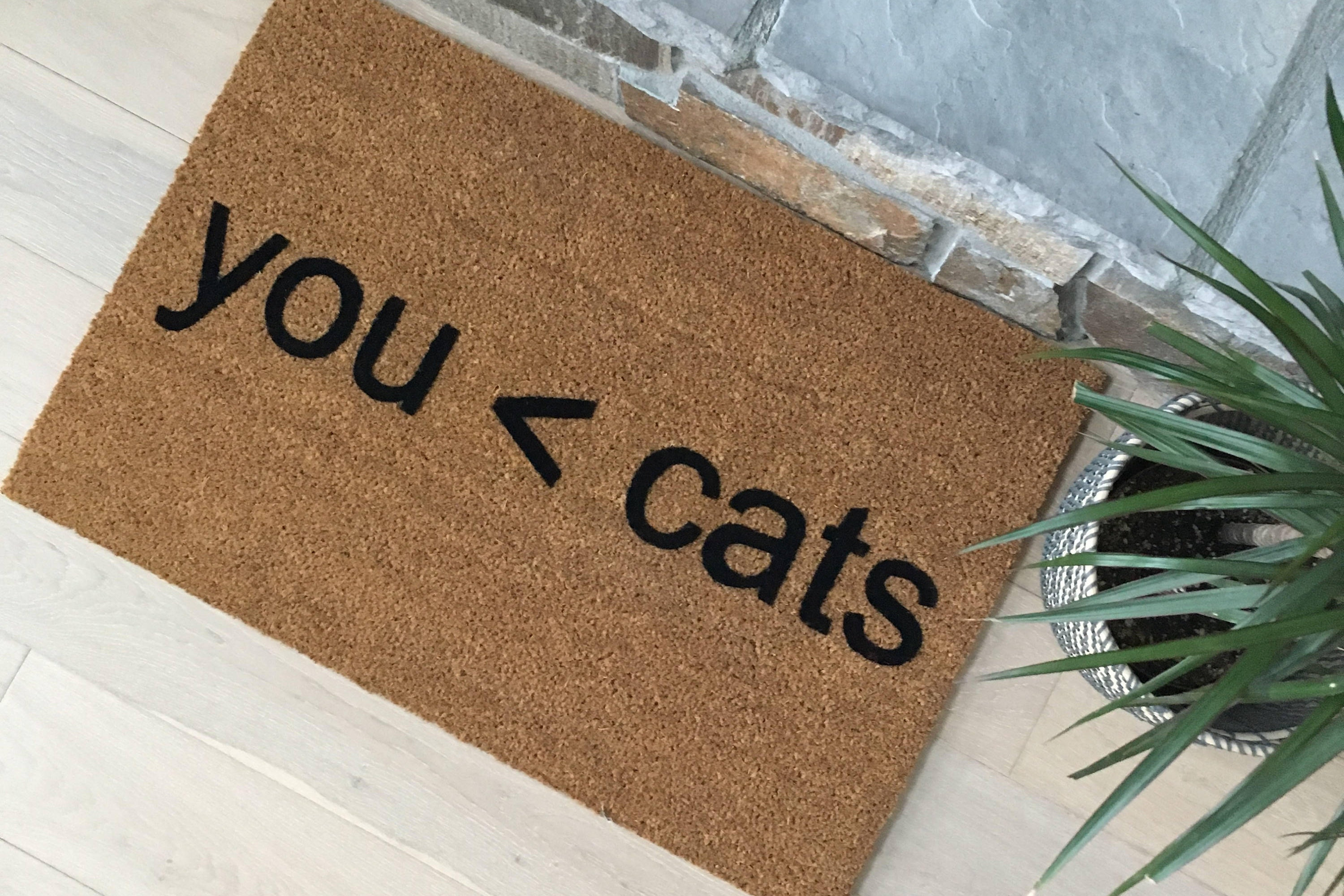 doormat cat by mats paws mat uk visitors kitchen welcome be co the approved home rug amazon dp must kitty