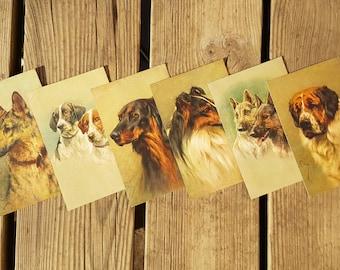 Lot 6 Cartes postales avec chiens peints vintage