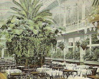 Amsterdam Hotel Krasnapolsky (Wintertuin) Dining Room on Antique Postcard 1904
