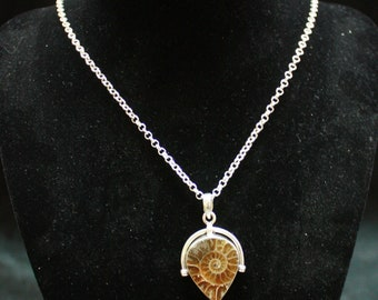 Ammonite Fossil Necklace 925