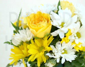 Flower Stock Photo   Yellow & White Flowers. Affordable Royalty Free Image