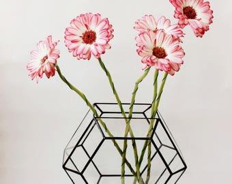 Geometrische Terrarium, geometrische Terrarium Glasbehälter, handgemachte Glasterrarium, geometrische Inneneinrichtungen, gebeizt Glasterrarium, Geschenke