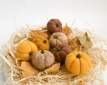 Needle felted pumpkins, Set of 7,  Rustic pumpkin ornament, Thanksgiving decor,  Halloween gift decor, Fall decor, Miniatures, MADE TO ORDER