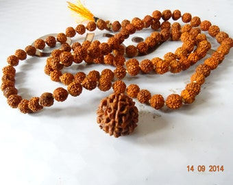 ENERGIZED 110% Original Round Rare One Ek Face 1 Mukhi Rudraksha JAVA Bead #001