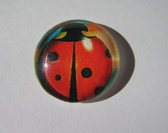 Glass cabochon round 25 mm with a fancy Ladybug image and original