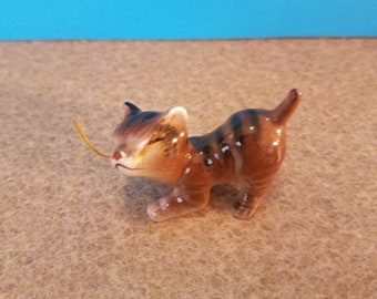 Brown Tan and Black Cat miniature Cat with Whiskers