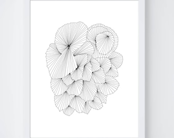 A Fan of a Fan Fine Art Print