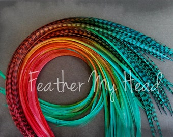 "Feather Hair Extensions - Multi Color Medium Length 7"" - 9"" (18-23cm) Long - 5 Pc - Red Brown Teal - Durango"