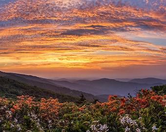 Summer Sunset - Mountain Sunset - Blue Ridge Mountains, Roan Mountain, Flaming Azalea, Blue Ridge Sunset, Rays of Light