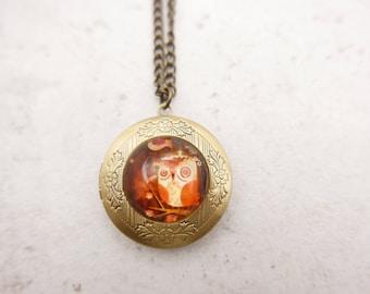 Owl Necklace, Owl locket, 2020m