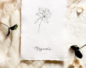 Magnolia, floral illustration, botanical print