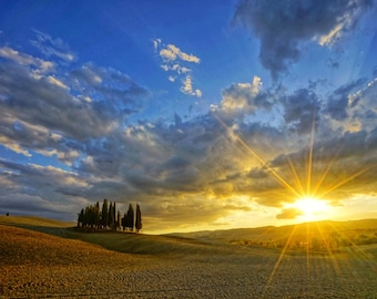 Sunset, Tuscany: An Archival Pigment Fine Art Print of Cypress Trees while the Sun Sets in the Distance in the Val d' Orcia